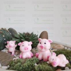 Gia Đình Lợn Hồng