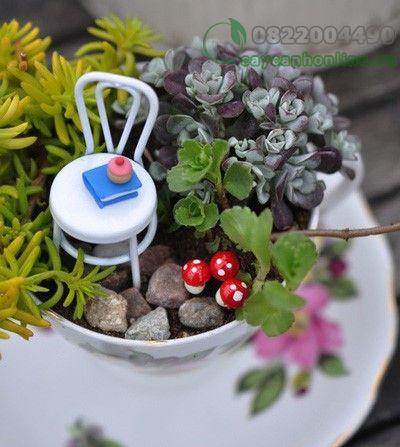 Học cách làm khu vườn mini trong tách trà cho góc nhà thêm xinh