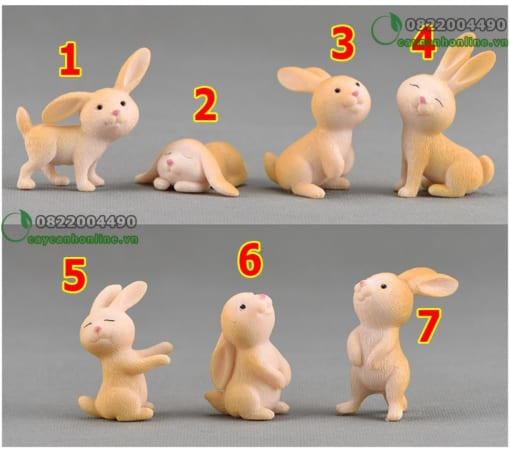Thỏ xinh tinh nghịch