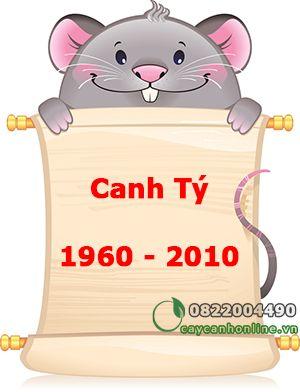 Cây hợp tuổi 1960 - 2020 Canh Tý