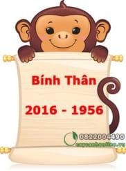Tuổi Bính Thân sinh năm 1956 – 2016 chọn cây hợp tuổi hợp mệnh