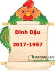 Tuổi Đinh Dậu 1957 – 2017 chọn cây phong thủy để bàn nào?