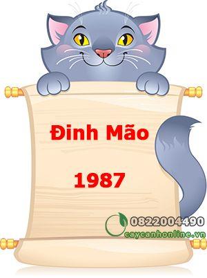 Cây hợp tuổi Đinh Mão sinh năm 1987
