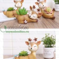 Chậu trồng cây hình động vật
