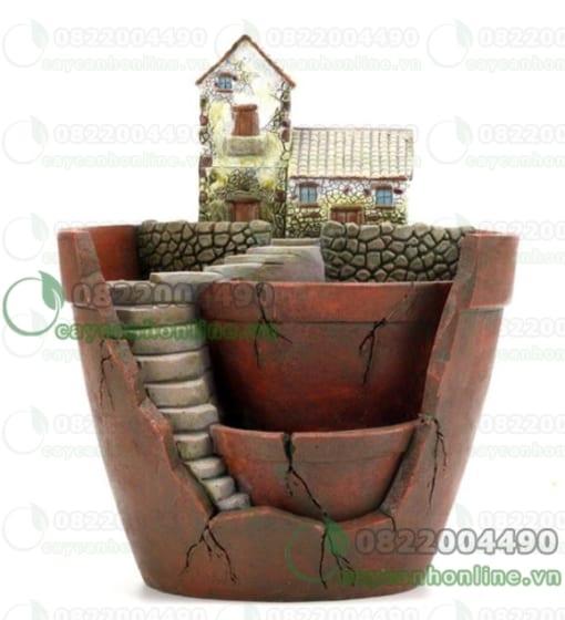 Chậu tiểu cảnh trồng cây