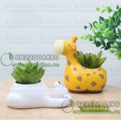 Chậu trồng cây mini để bàn hình thú