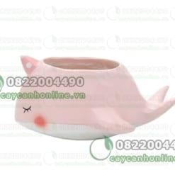 Chậu trồng cây mini hình cá voi cá heo