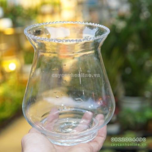 bán bình thủy tinh trồng cây thủy sinh