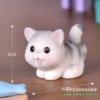 Mèo xám